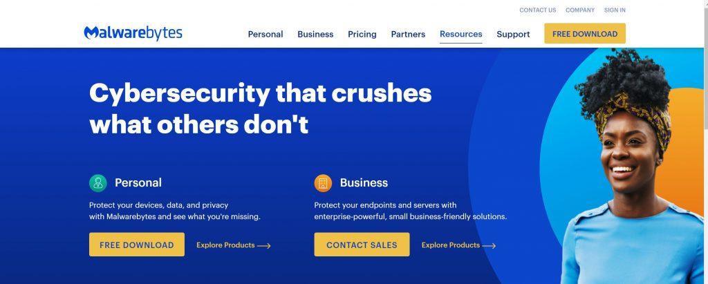Malware cybersecurity antivirus