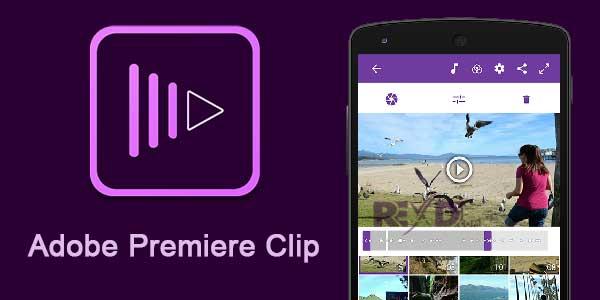 Adobe premier clip for instagram editing