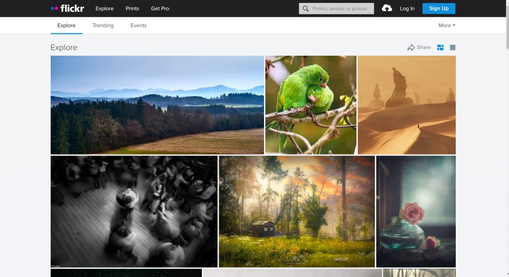 Flickr stock free images