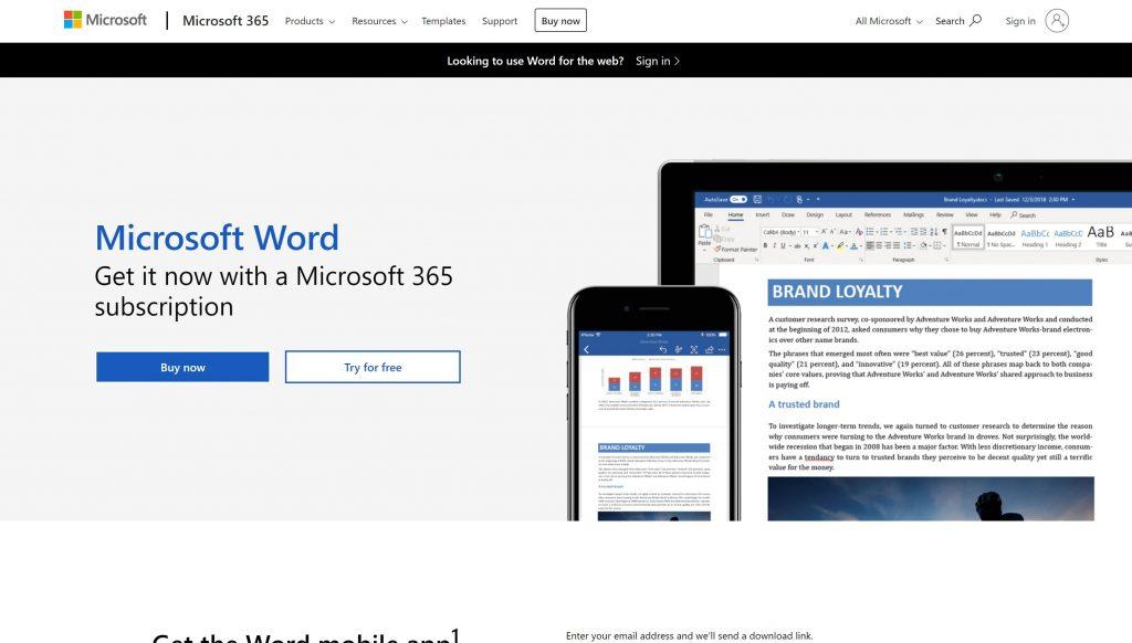 MS Word- best grammarly alternatives