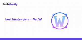 best hunter pets in WoW