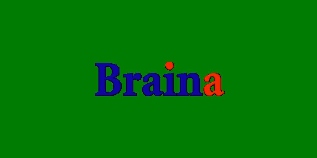 Braina Pro
